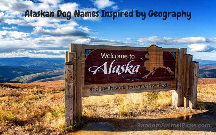 Alaskan Dog Names Inspired by Geography