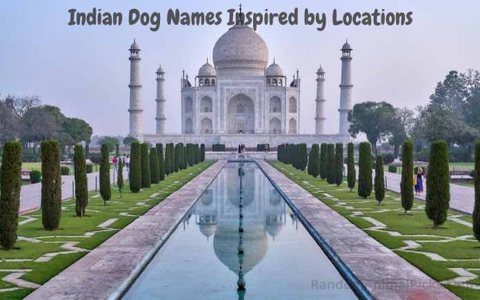 Indian Dog Names Inspired by Locations