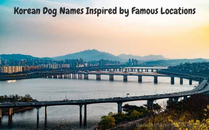 Korean Dog Names Inspired by Famous Locations