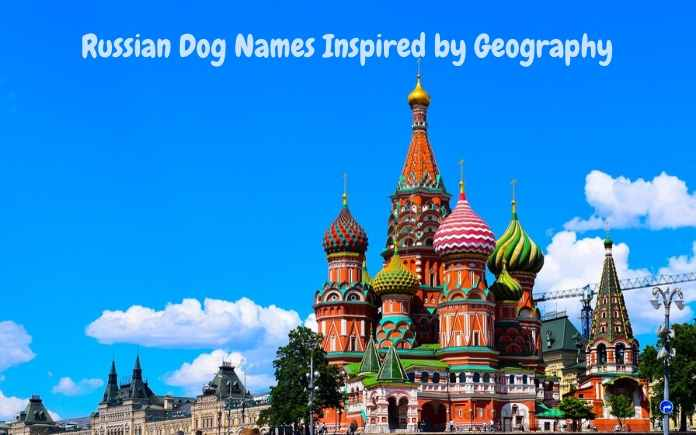 Russian Dog Names Inspired by Geography