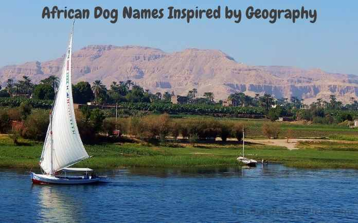 African Dog Names Inspired by Geography