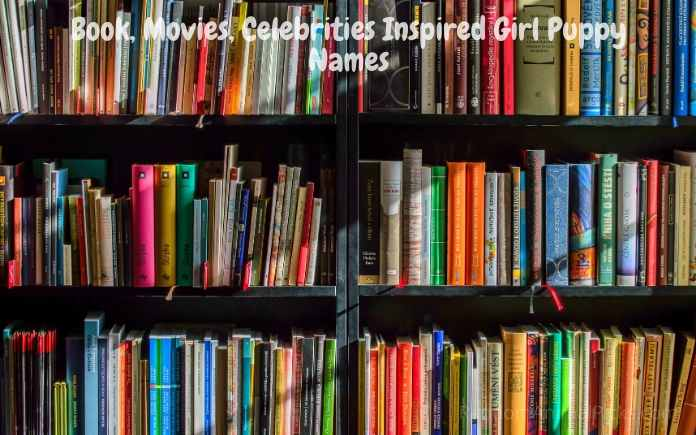 Book, Movies, Celebrities Inspired Girl Puppy Names