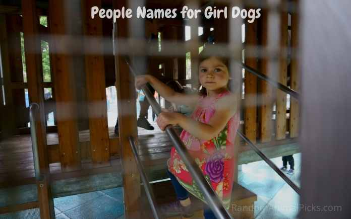 People Names for Girl Dogs
