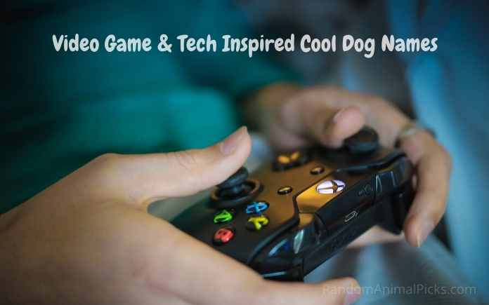 Video Game & Tech Inspired Cool Dog Names